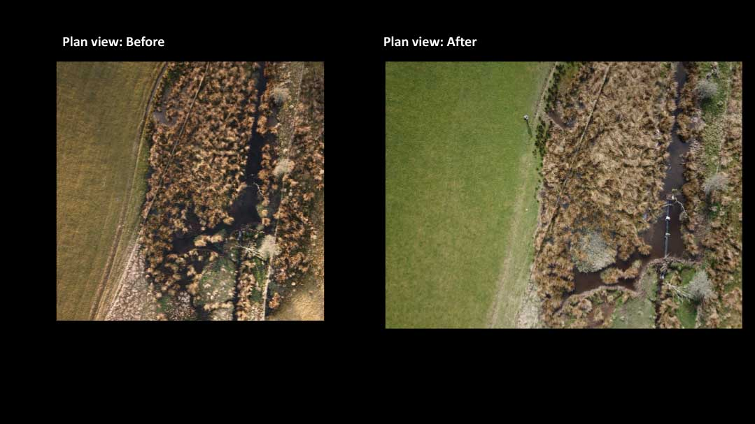 before and after - from above